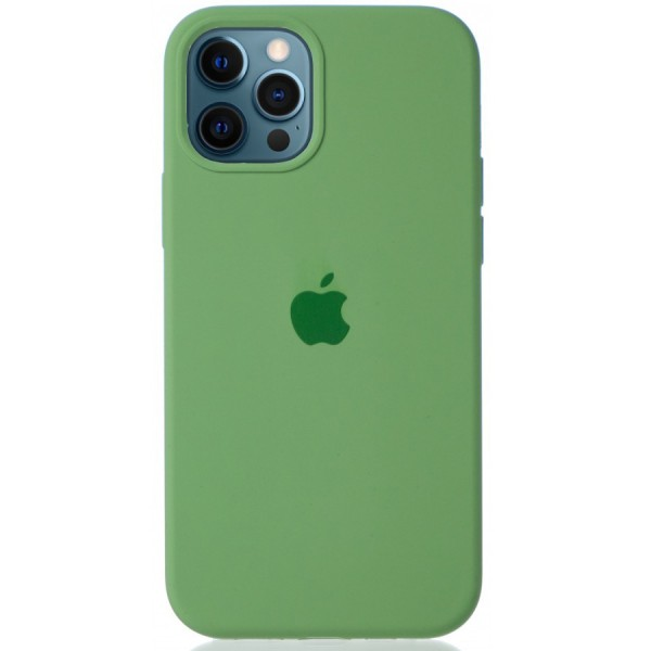 Чехол Silicone Case для iPhone 12/12 Pro зеленый